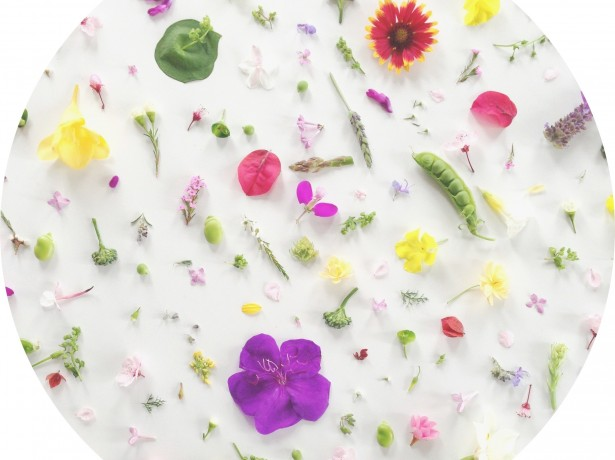 661Food Collage Series: Happy Spring + a Desktop Wallpaper