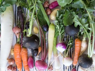 1278Post-collage Root Vegetable + Lentil Soup
